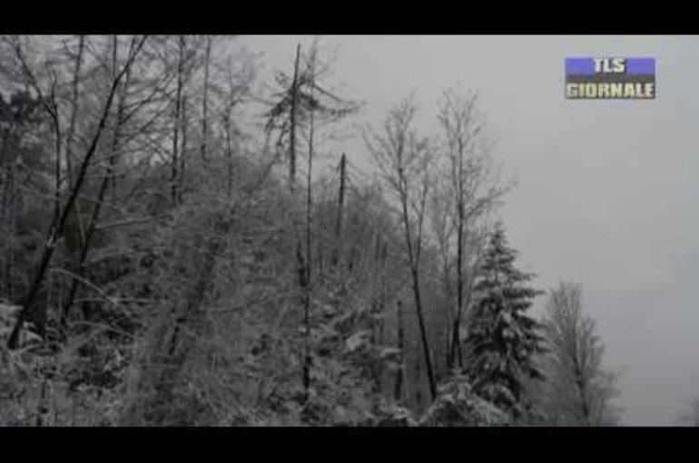 Freddo e Neve in provincia della Spezia