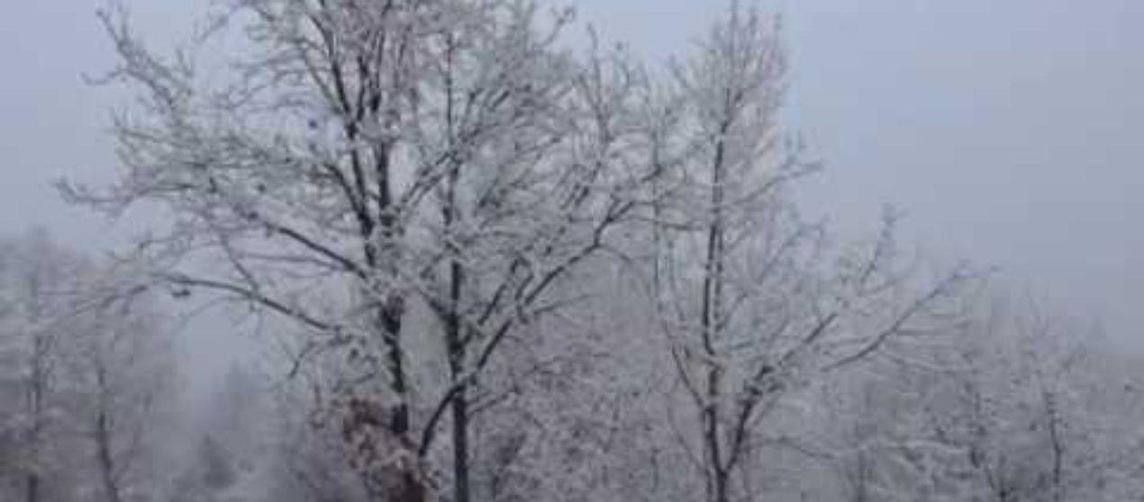 La neve in provincia della Spezia