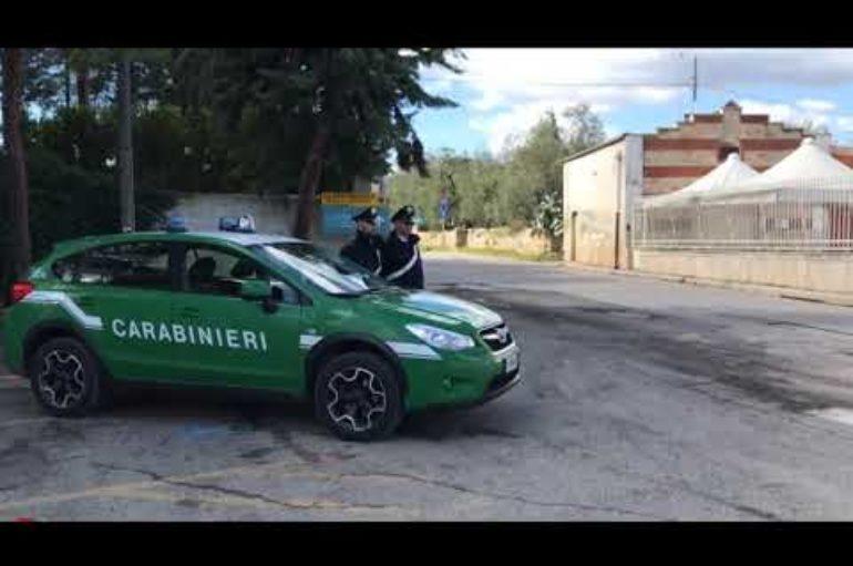 Carabinieri forestali del Parco delle Cinque Terre, bilancio 2019